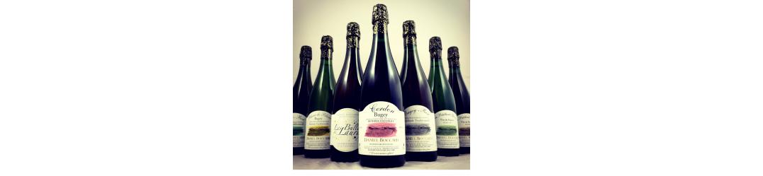 Coffret Découverte Vins Daniel boccard